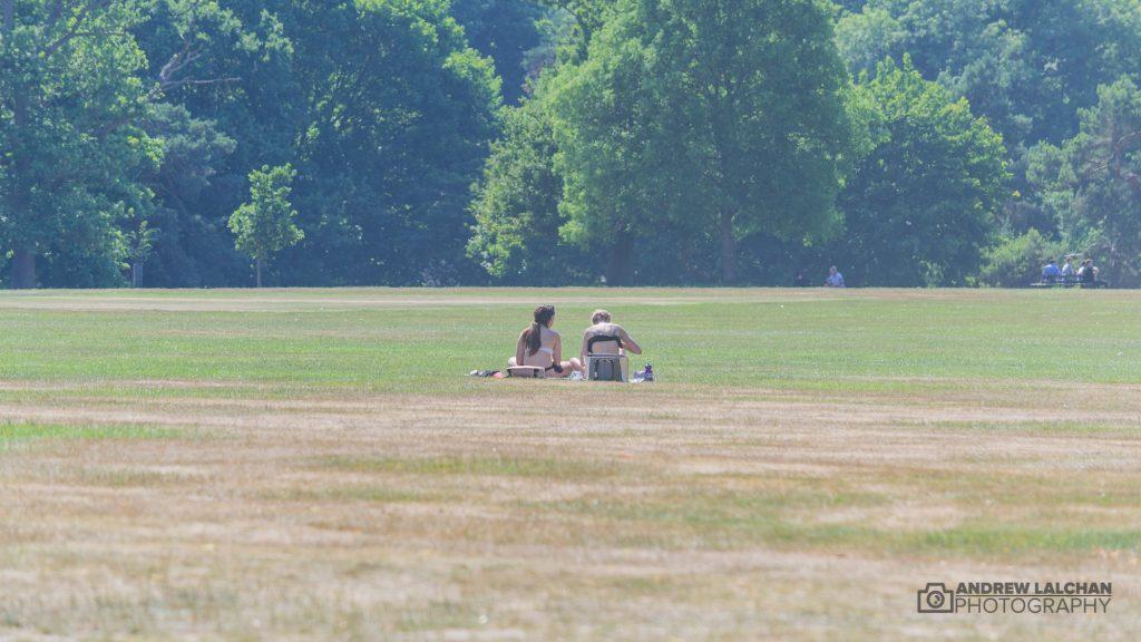 Sunbathing in Cassiobury Park, Watford