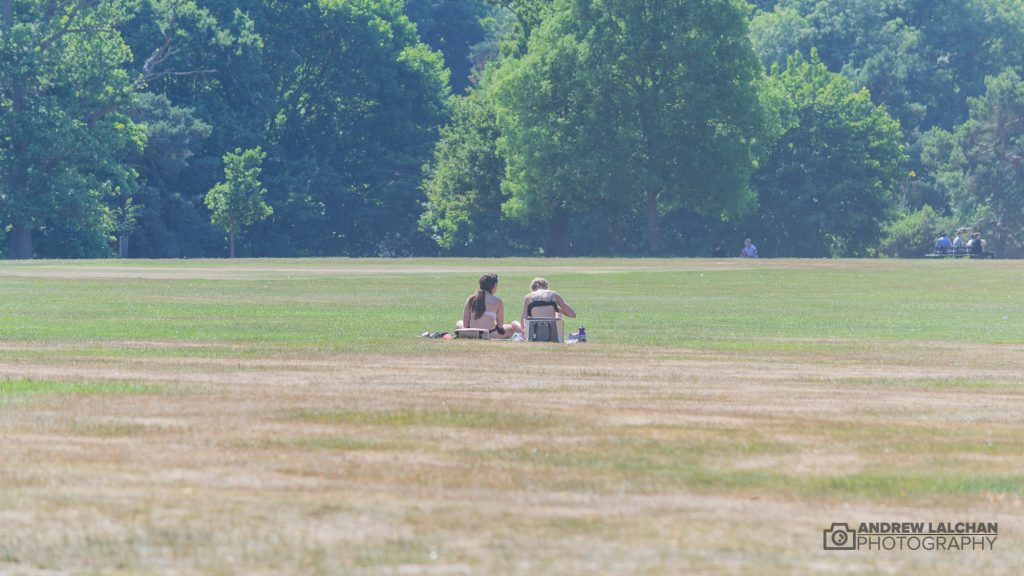 Sunbathers - hottest day of the year