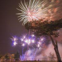 Firework in Cassiobury Park