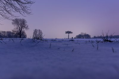 Beast from the East photos