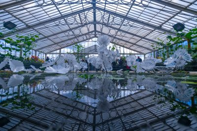Chihuly - Reflections on nature at Kew Gardens