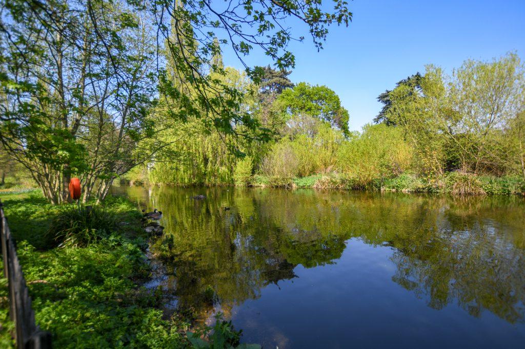 April in Chiswick
