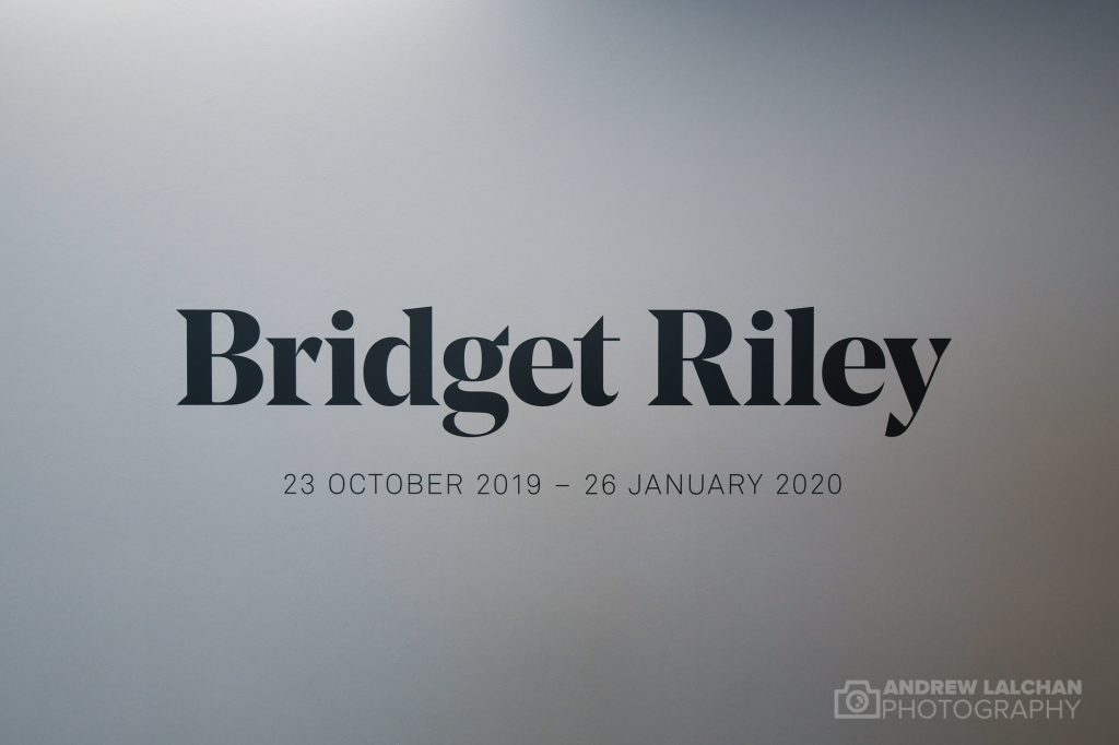 Bridget Riley Exhibition at Hayward Gallery
