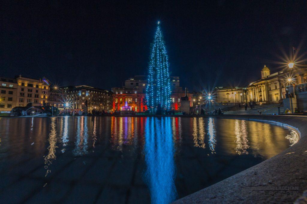 Christmas Tree at Trafalgar Square
